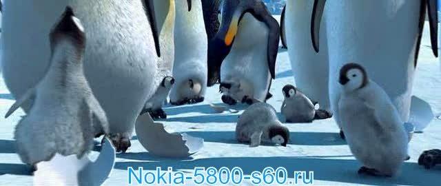 Скачать фильмы для Нокиа 5800, N97, 5530, 5230: Делай Ноги / Happy Feet